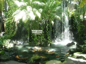 WaikikiIntlMarketplace